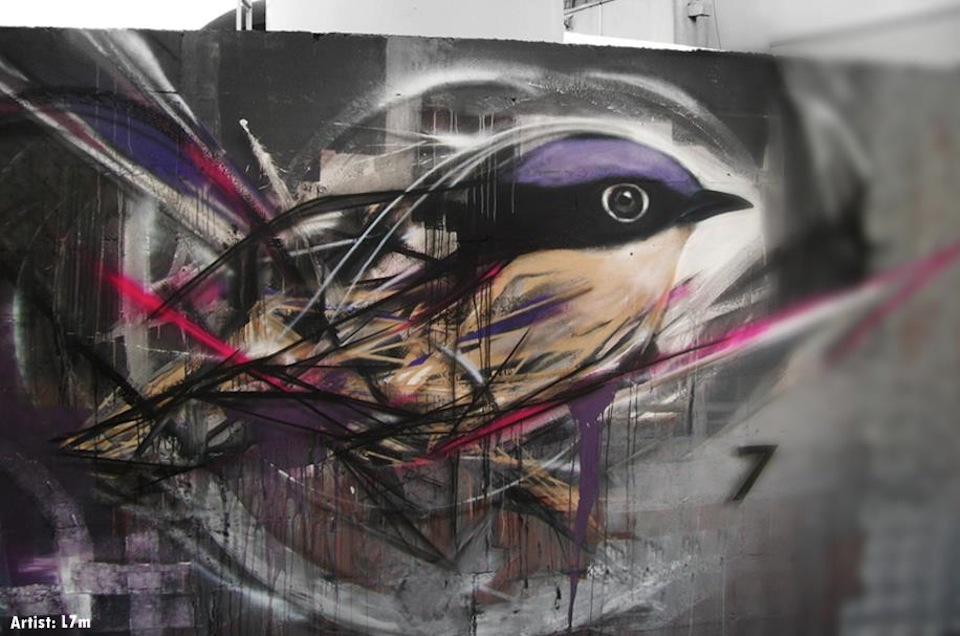 graffiti-birds-by-brazilian-003