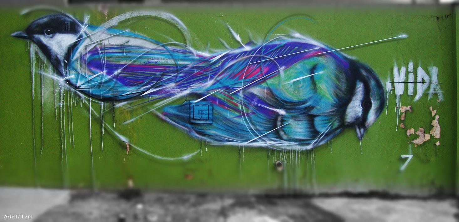 graffiti-birds-by-brazilian-004