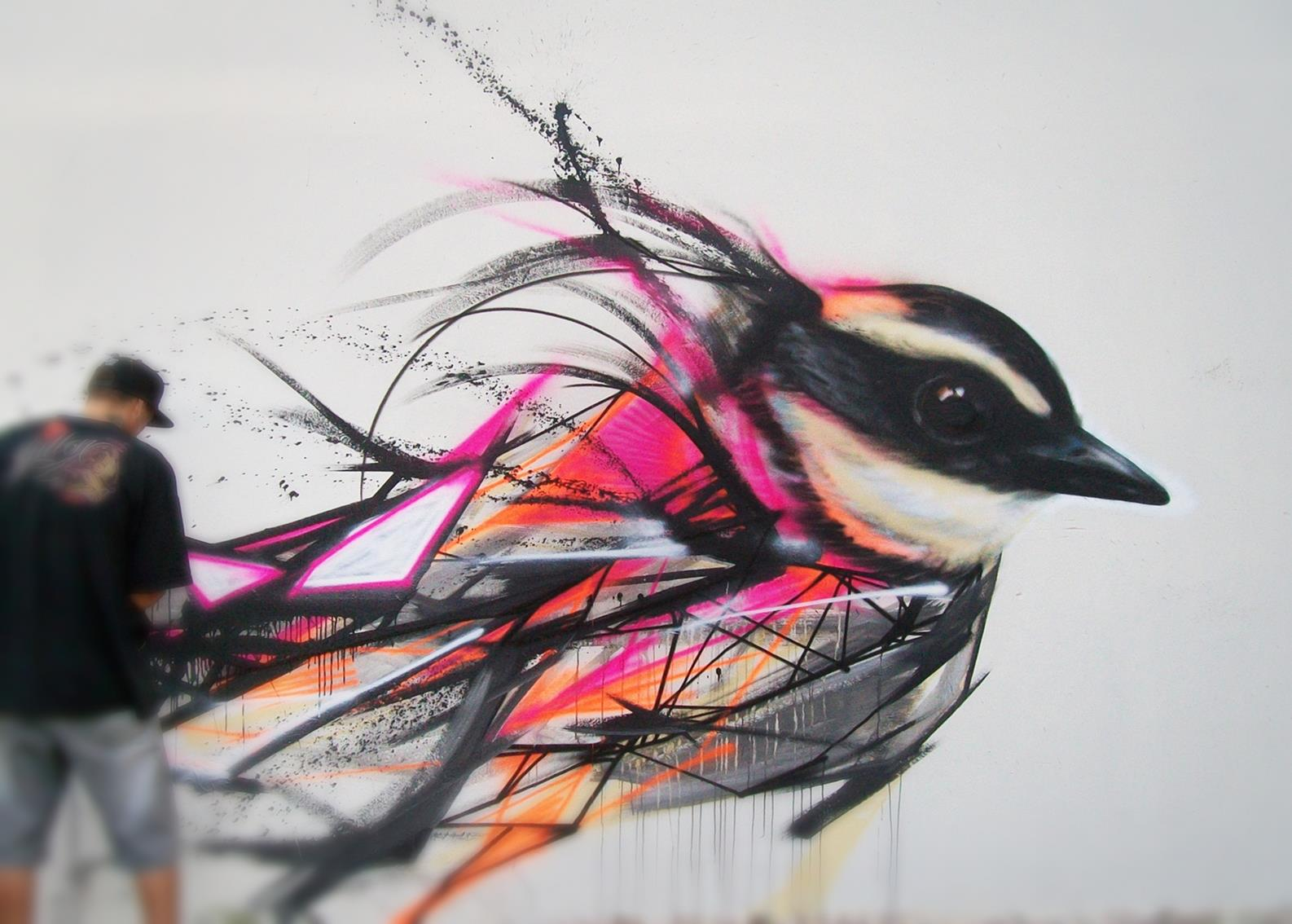 graffiti-birds-by-brazilian-006