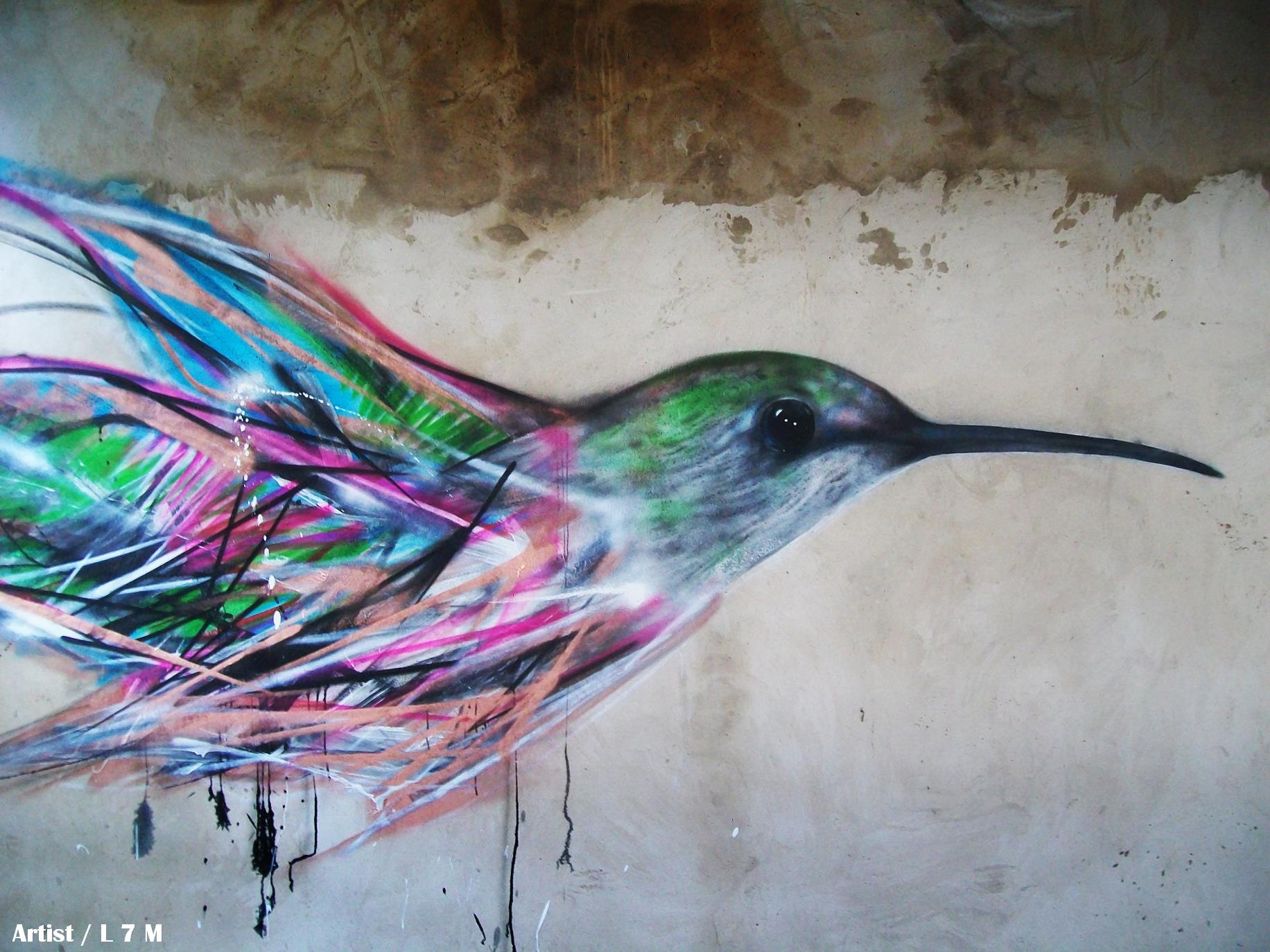 graffiti-birds-by-brazilian-007