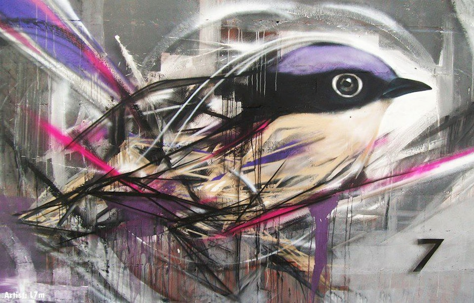 graffiti-birds-by-brazilian-012