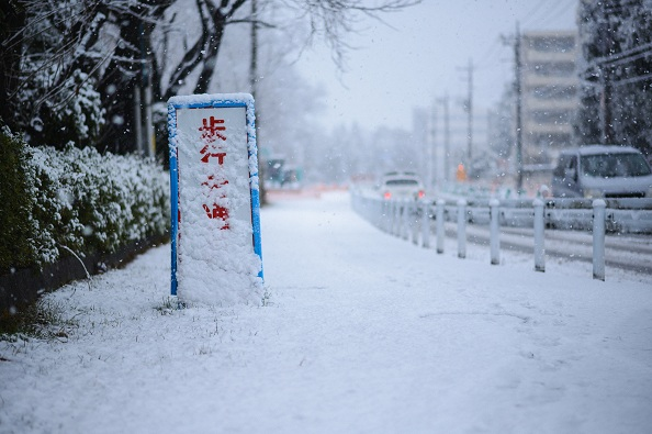 Tokyo-Area-Blanketed-by-Snow-on-April-the-8th-02