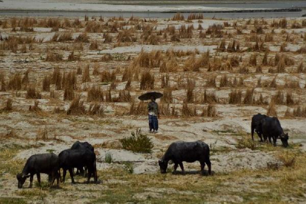 Погода в поселке теплая гора пермского края