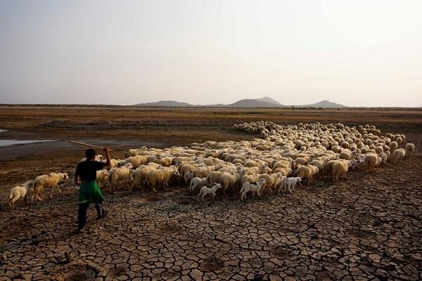 vietnam_drought