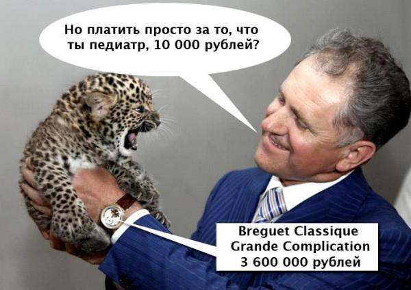 Волков, брегет педиатор