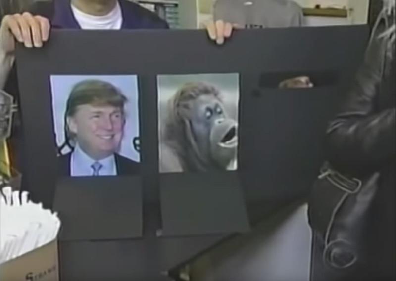 Отгадайте - где обезьяна а где Трамп