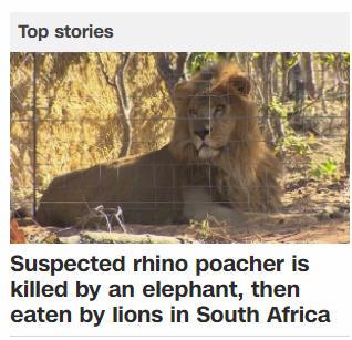 Топ новость на CNN