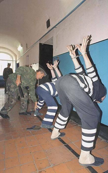 список пожизненно заключенных из города ульяновска Comfort представлено