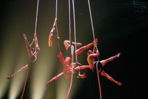 Сочинение по английски на тему цирковое представление #8