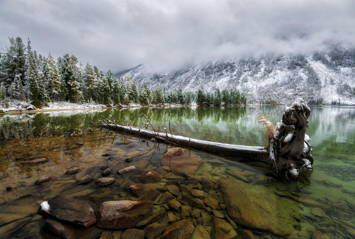 Фотограф сергей грачев