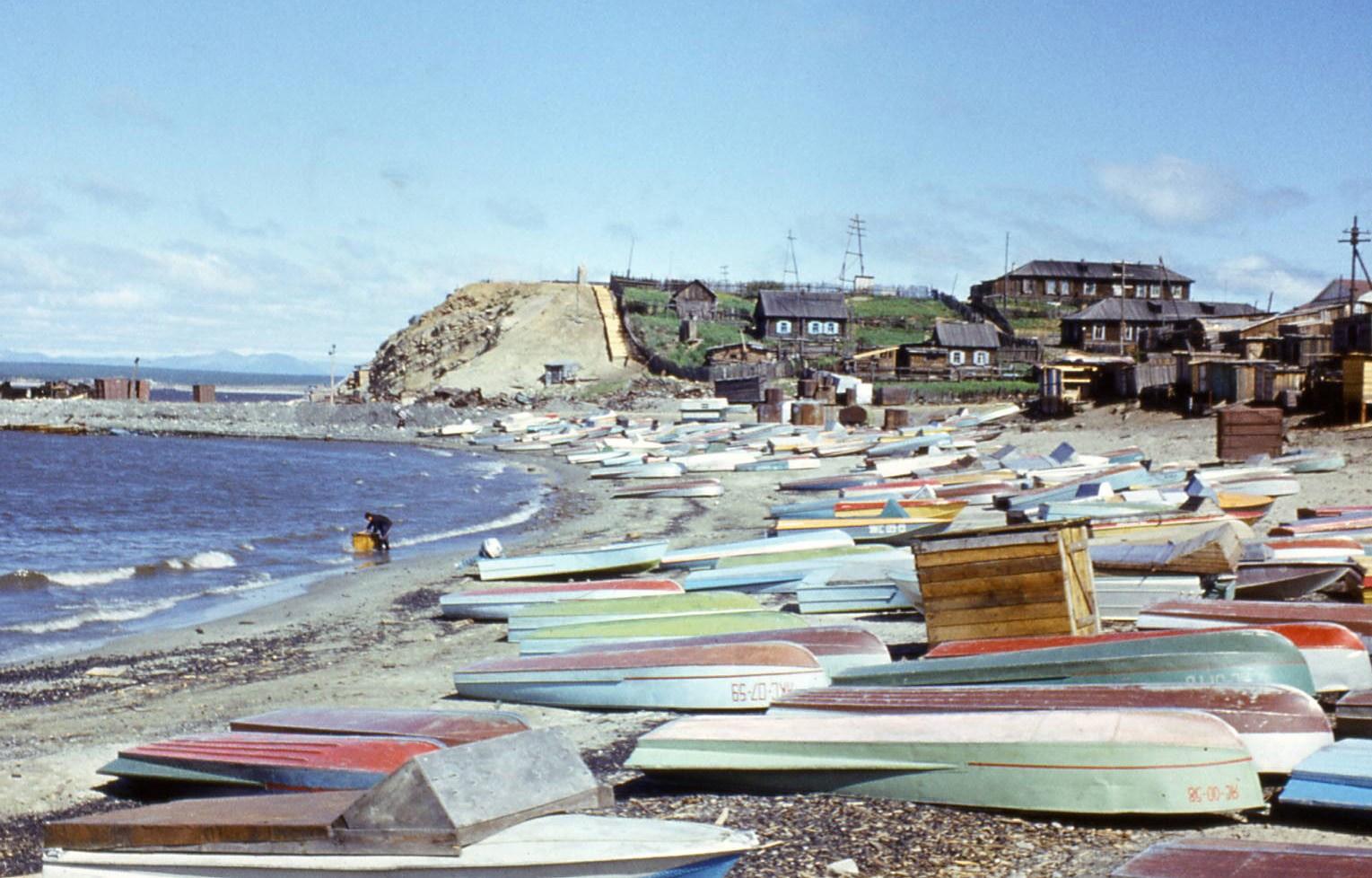 117(1977).jpg