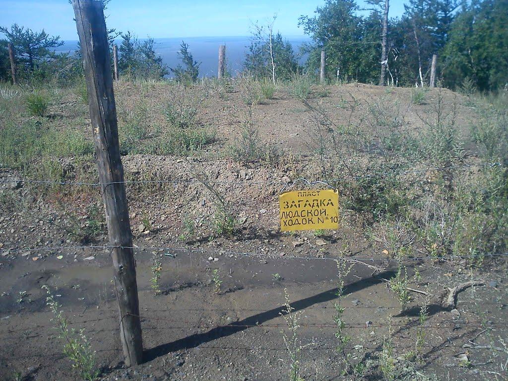 470(мест над сгоревшей шахтой опасно).jpg