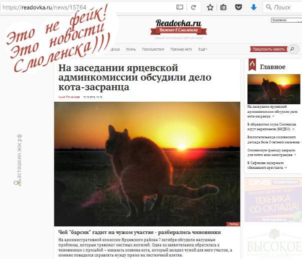 На заседании ярцевской админкомиссии обсудили дело кота-засранца