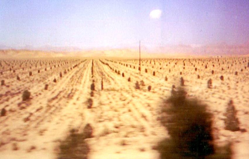 Сирійська пустеля