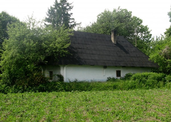 IMG_3682