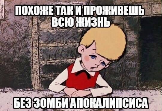 fe7pXZaK95E