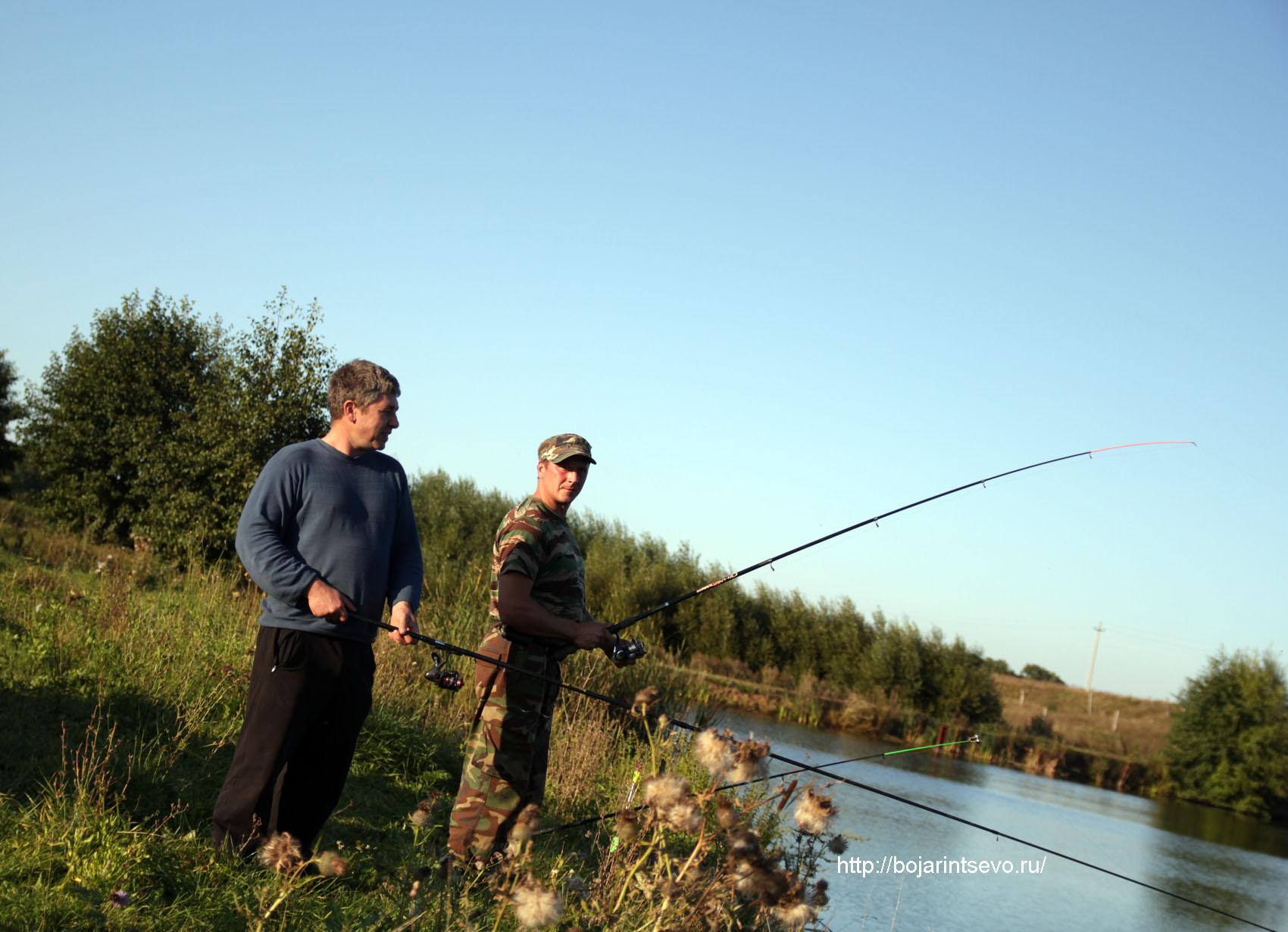 рыболовные базы в касимовском районе