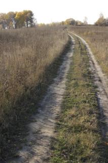 Дорога к хутору Бутырки