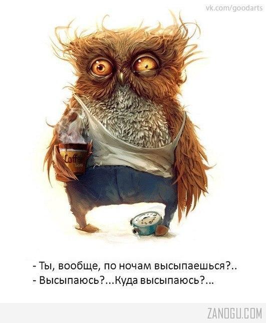 kuda_vyisyipayus
