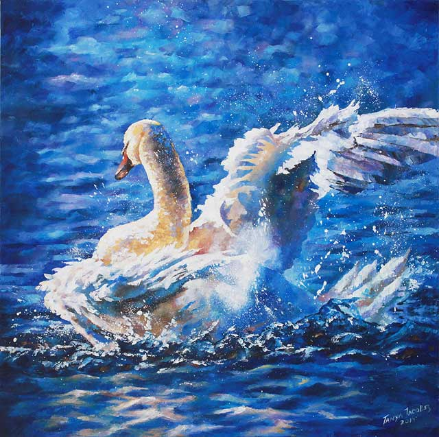 white-swan-by-Tanya-Jacobsz