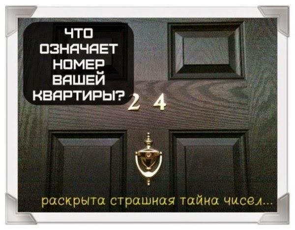 tayna1