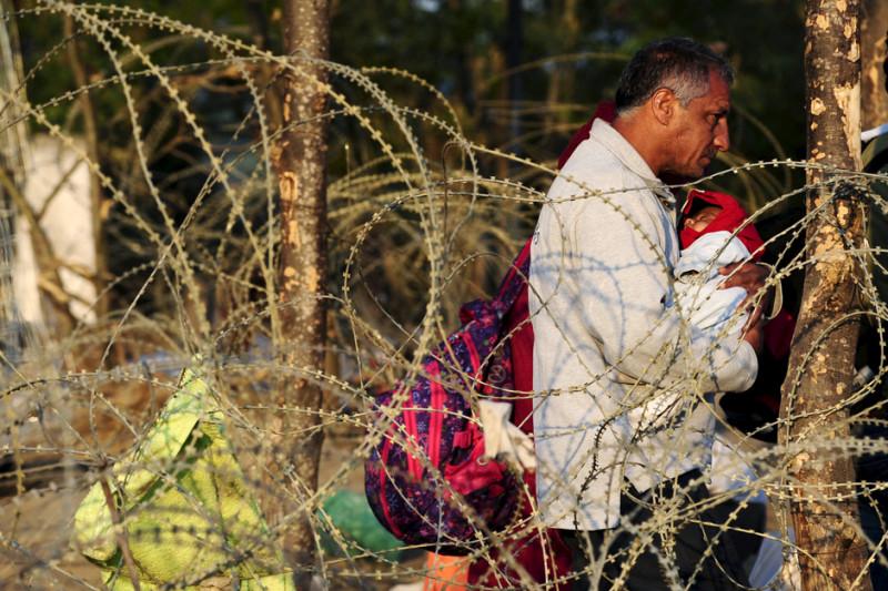 беженцы2