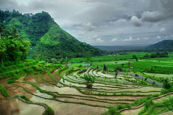 Бали 2.jpg