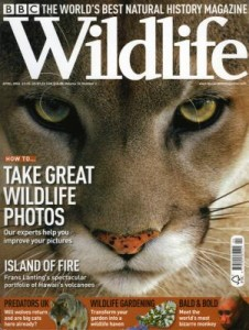 April-Wildlife-cover_1