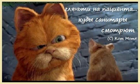 -Fxivs2qpro