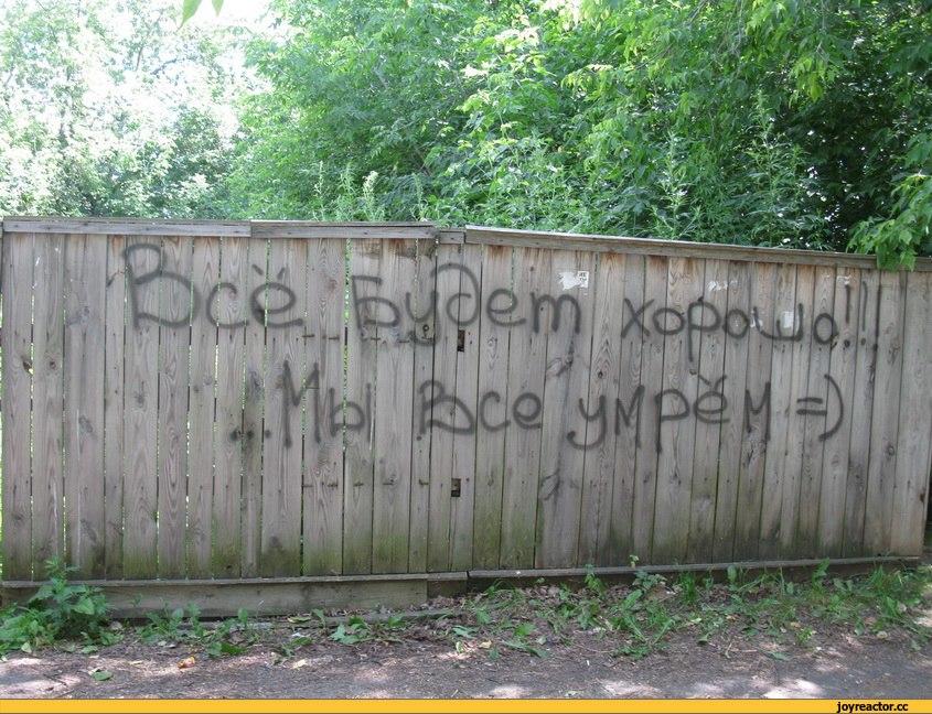 цинизм-надпись-на-заборе-песочница-712746