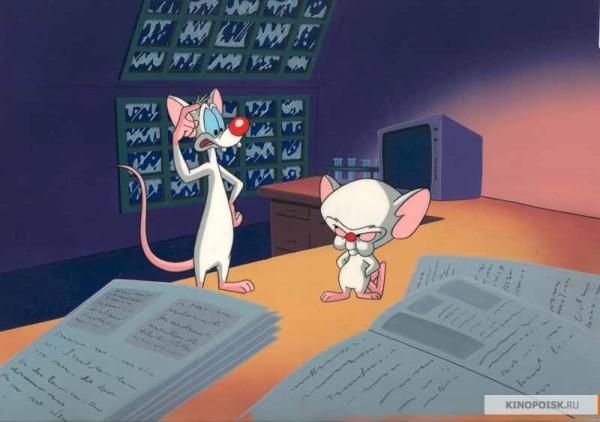 kinopoisk.ru-Pinky-and-the-Brain-1595256