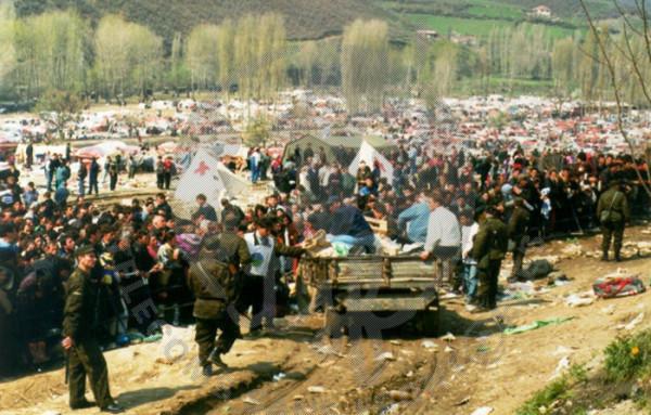TSF_Kosovo
