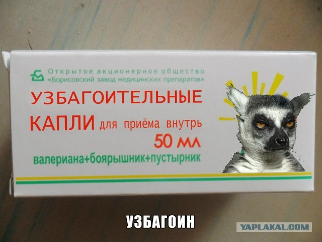 uzbagoysya_002