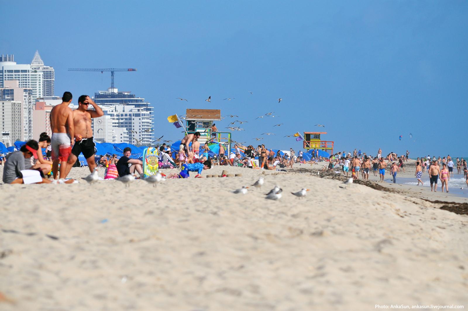 Это на пляже фото 636-804