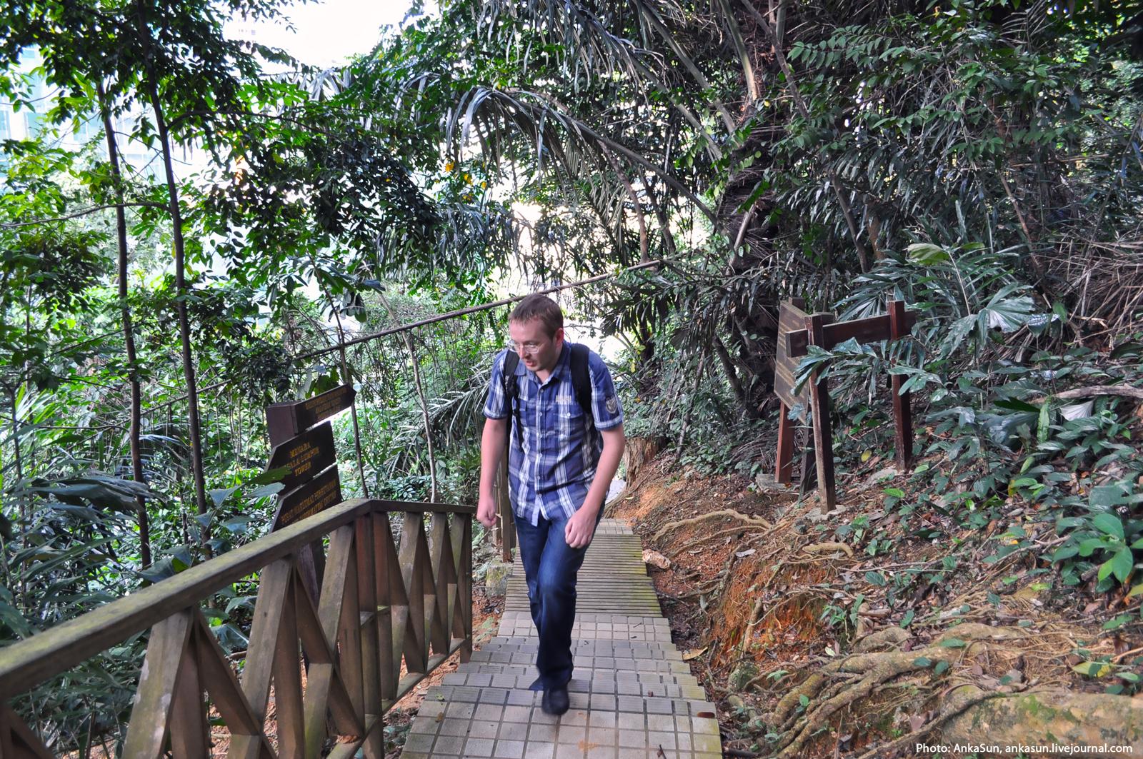 Узенькая тропинка по которой савушкин 28 фотография