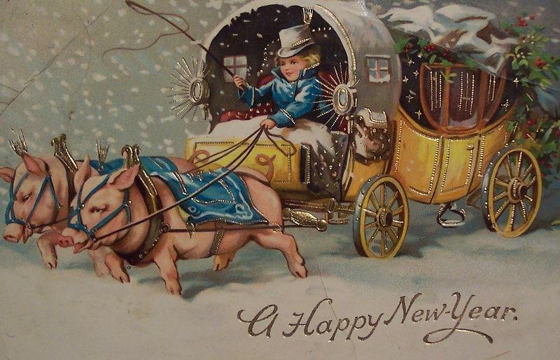 свиньи новый год