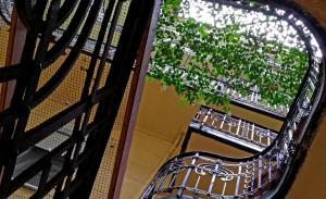 Двор и лестница