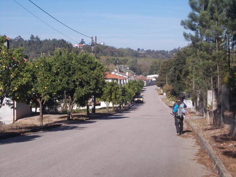 апельсиновая улица