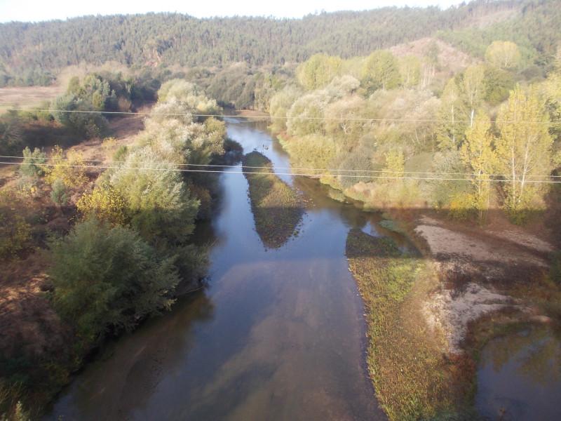 Проходили через длинный высокий мост через реку, ну и красота там утром! Прямо под нами эвкалиптовый лес, а цветы эвкалипта рядом, только протяни руку. А ведь так редко их можно увидеть, обычно они так высоко! На реке рыбаки ловят рыбу, не знаю, правда, клюет ли, и что именно. Лес красивый у реки, особенно с такой высоты, необычная перспектива. Навстречу по мосту топали пилигримы, видимо, идут в Фатиму. Улыбки пожелания Bom Caminho! были всем обеспечены.