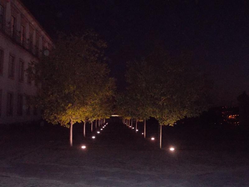 жаль, что огромная площадь у университета не просматривается - темнело быстро