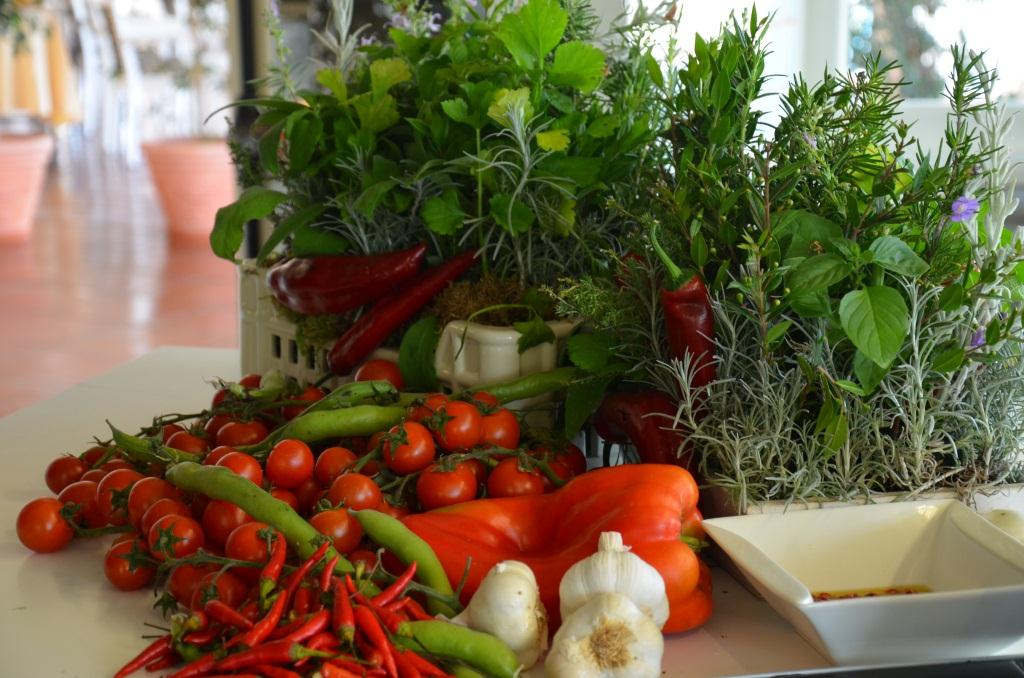 orto verdura