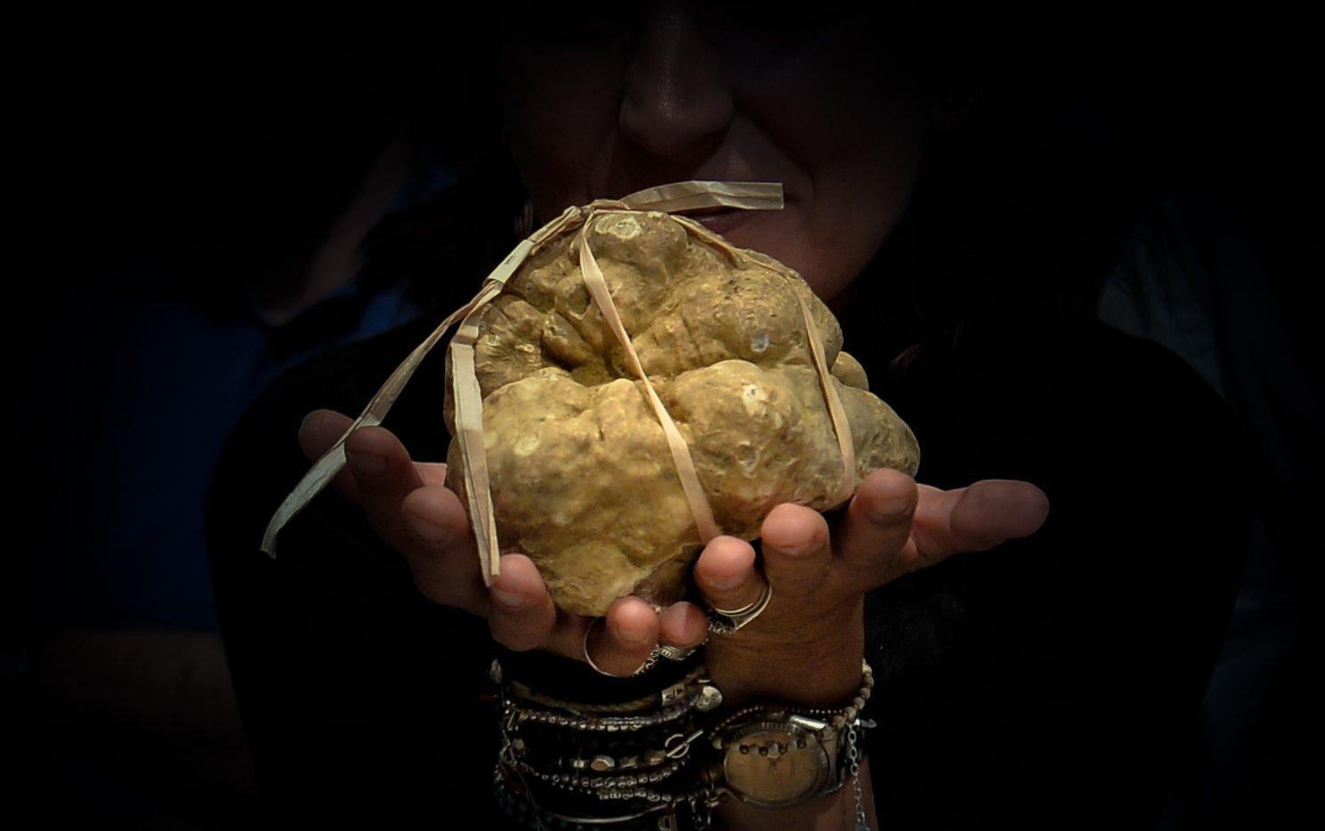 Итальянский трюфель: история самого дорогого и «волнующего» деликатеса