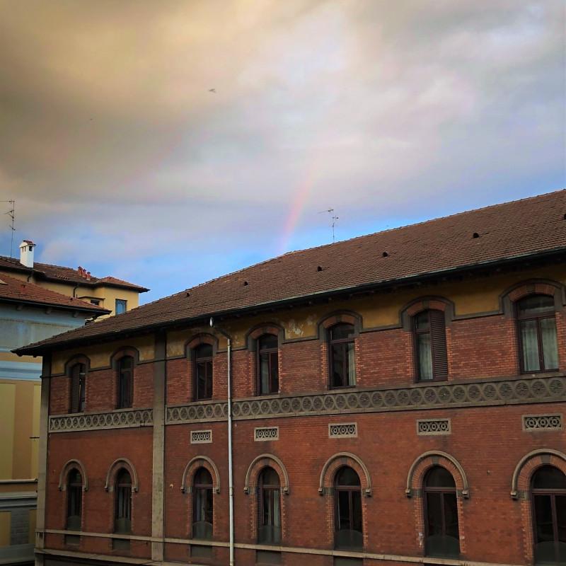 А из нашего окна - в небе радуга видна!