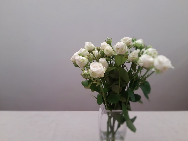 028 blog