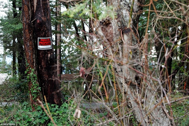 24388782-7973271-The_signs_are_also_featured_in_the_wooded_areas_around_the_prope-a-7_1581040658004