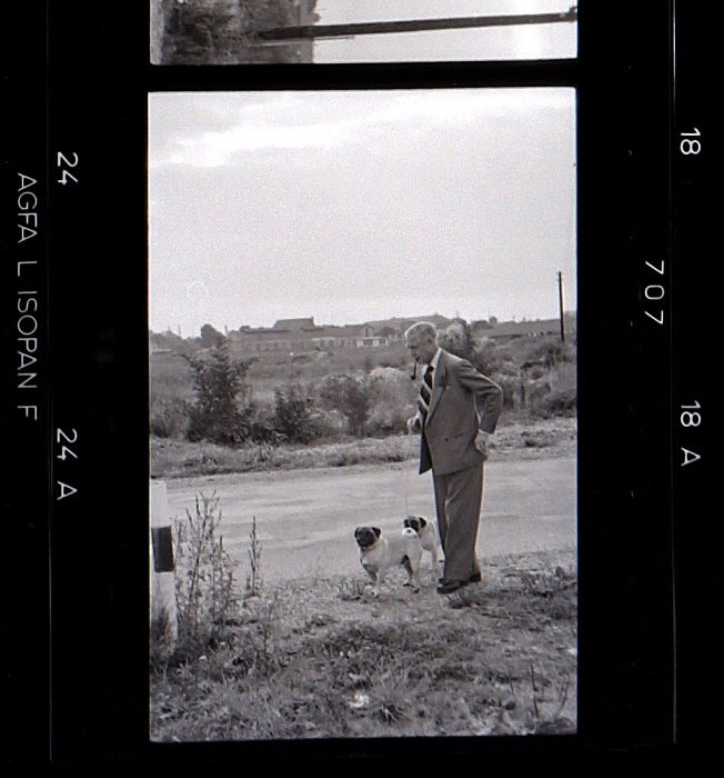 40534536-9367317-One_photo_shows_the_Duke_taking_a_pair_of_pugs_for_a_walk_along_-a-2_1615900533139