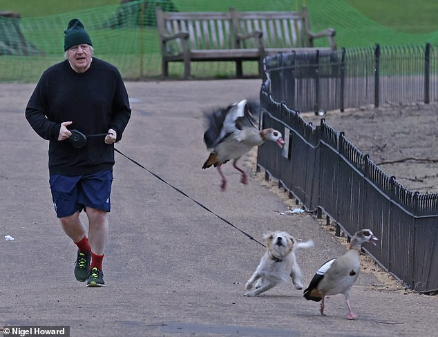 41067162-9413447-Boris_Johnson_pictured_out_running_this_morning_will_hold_a_pres-a-50_1617046536212