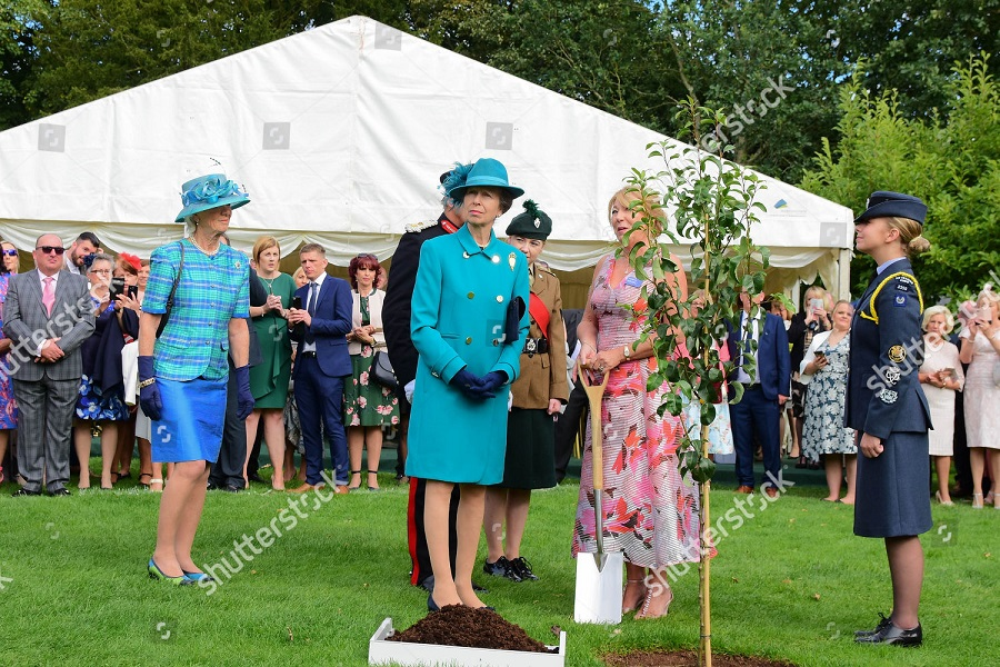 annual-garden-party-hillsborough-castle-uk-shutterstock-editorial-9858913l