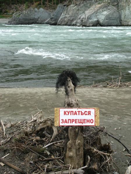 Алтай  2014 019