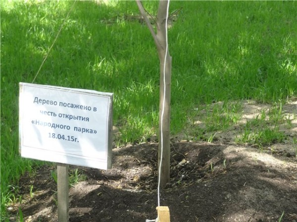 Народный парк Белорусская 2.jpg